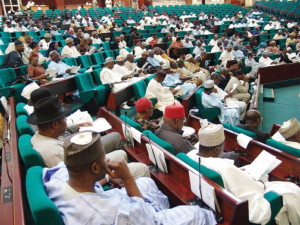 House of Representative Nigeria